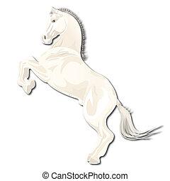 horse - Blanching horse on leg on white background