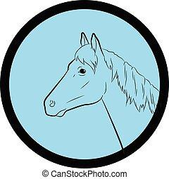 Horse Face Closeup Vector