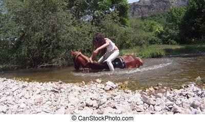Horse falling in a river
