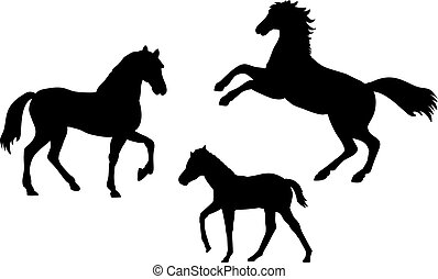 Horse family. Silhouettes of animals