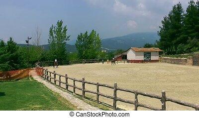 Horse Farm Field and Barn
