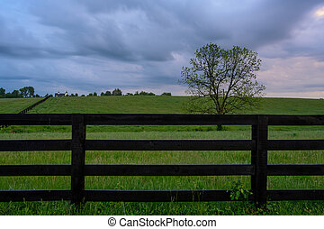 Horse Fence and Gray Skies