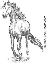 Horse gallop running. Pencil sketch portrait - Running white...