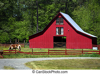 Horse Grazes in Front of Red Wooden Barn