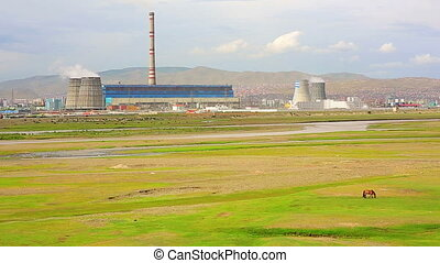 Horse grazing next to power plant - Horse grazing on green ...