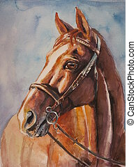Hand painted portrait of horse. Picture created with watercolors.