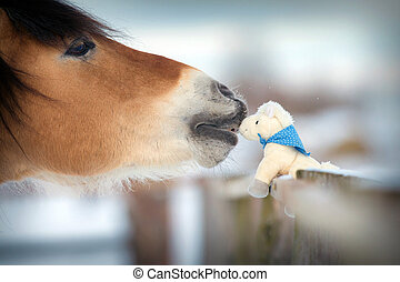 Horse head and toy, kiss - Horse and toy horse in winter,...