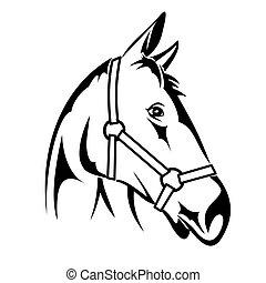 Horse Head - Vector illustration : Horse Head on a white...