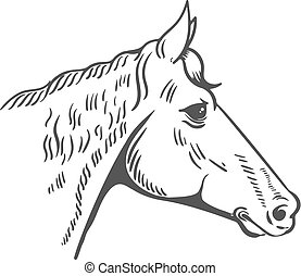Horse head illustration isolated on white background. Design ele