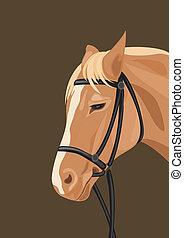 Horse head on the dark background. Vector illustration