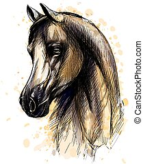 Horse head portrait from splash of watercolors. Hand drawn...