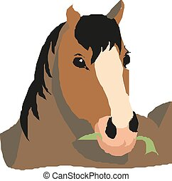 Horse head portrait illustration, vector