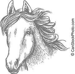 Horse head sketch of arabian mare