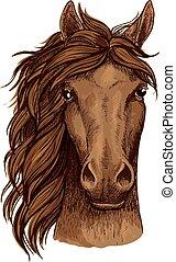 Horse head sketch of brown arabian racehorse