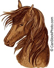Horse head sketch of brown racehorse