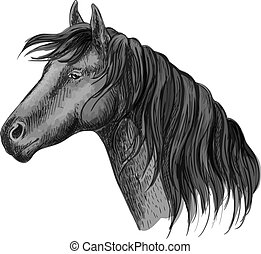 Horse head sketch portrait