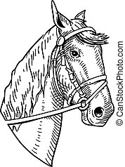 Horse head vintage illustration