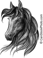 Horse head watercolor sketch portrait