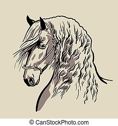 Horse head with a mane. Hand drawn vector.