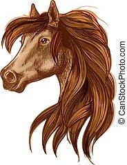 Horse head with long wavy mane