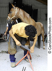 Horse hooves and shoeing