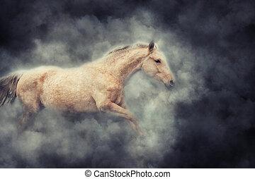 Horse in smoke