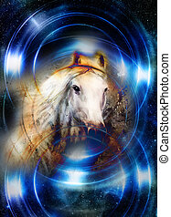 Horse in space, in circle light. Mirror on the planet Earth....