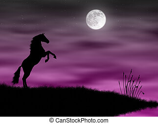 Horse in the moonlight