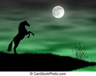 Horse in the moonlight - Wild horse silhouette in a green...
