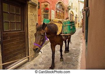 Horse in the narrow alleys of Monemvasia, Greece.