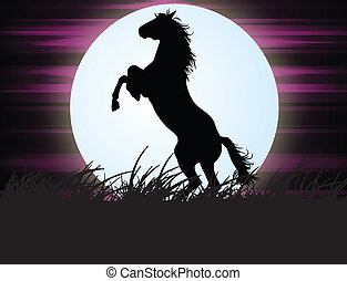 Horse in the night