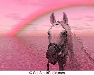 Horse in the rainbow - Wonderful horse under a colorful...