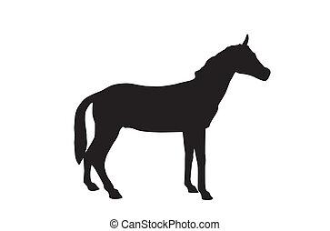 Horse Isolated on White Background. Vector Illustration. EPS10.