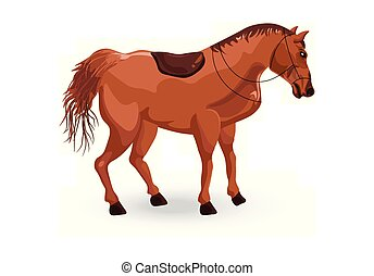 Horse isolated Vector. Detailed animal illustration