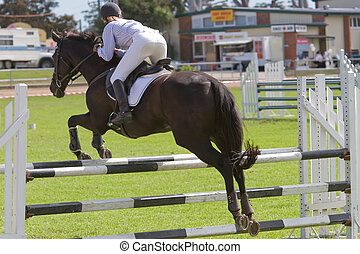 Horse Jumping - A horse jumping a barrier