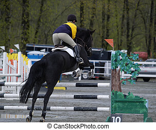 Horse jumping - Equestrian competion