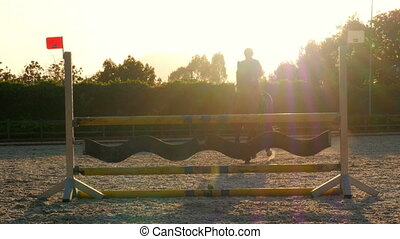 """""""Horse jumping hurdle at sunset, """""""