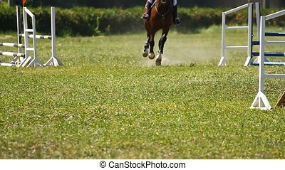 Horse jumping on a hurd