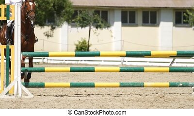 Horse jumping on a hurdle.