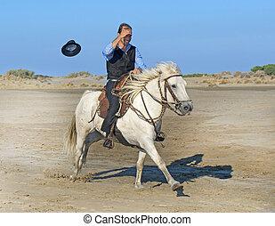 horse man on the beach