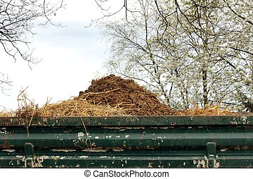 horse manure on trailer
