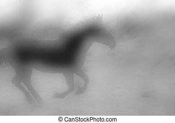 Horse Mist