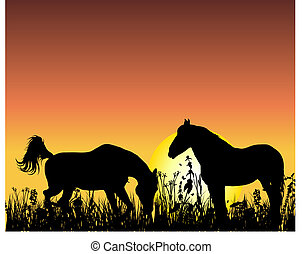 horse on sunset background - Horse silhouette on sunset ...