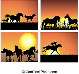 horse on sunset backgrounds set