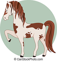 Horse Pinto - A pinto horse standing with one front leg up