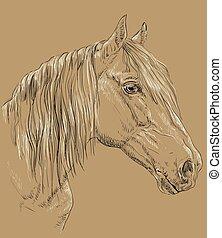 Horse portrait on brown background - Orlov Trotter horse...