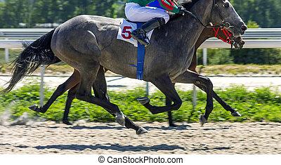 Horse race closeup.