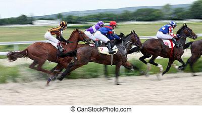 Horse race. Hippodrome in Pyatigorsk, Northern Caucasus, Russia.