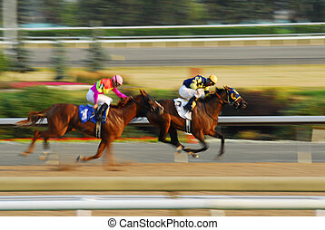 Horse race - Jockeys on a horses racing on race track