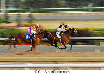 Horse race - Jockeys on a horses racing on race track